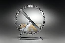 Getting off the hamster wheel